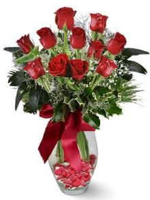 9 adet gül  Adana internetten çiçek satışı  kirmizi gül
