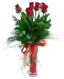 vazo içerisinde 5 kırmızı gül  Adana güvenli kaliteli hızlı çiçek