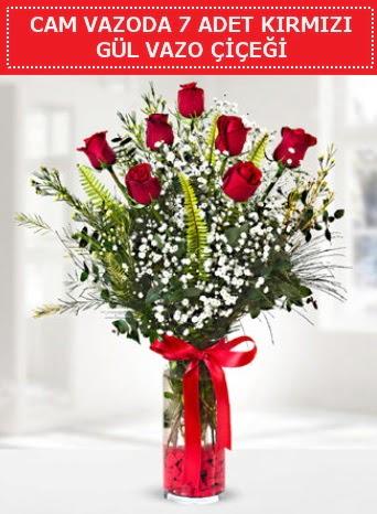 Cam vazoda 7 adet kırmızı gül çiçeği  Adana çiçek gönderme sitemiz güvenlidir