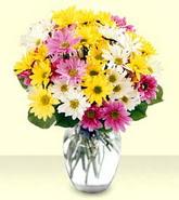 Adana internetten çiçek siparişi  mevsim çiçekleri mika yada cam vazo