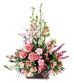 Adana ucuz çiçek gönder  mevsim çiçeklerinden özel