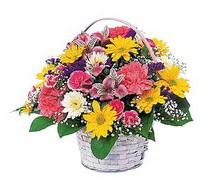 Adana çiçek , çiçekçi , çiçekçilik  mevsim çiçekleri sepeti özel