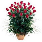 Adana uluslararası çiçek gönderme  10 adet kirmizi gül cam yada mika vazo