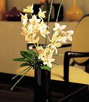 Adana çiçekçiler  cam yada mika vazo içerisinde dal orkide