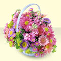 Adana yurtiçi ve yurtdışı çiçek siparişi  bir sepet dolusu kir çiçegi  Adana çiçek gönderme sitemiz güvenlidir