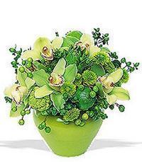 cam yada mika vazoda 5 adet orkide   Adana online çiçekçi , çiçek siparişi