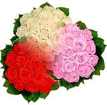 3 renkte gül seven sever   Adana çiçek , çiçekçi , çiçekçilik