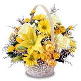 sadece sari çiçek sepeti   Adana çiçek gönderme sitemiz güvenlidir