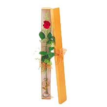 ince  kutuda  1  gül   Adana çiçek yolla