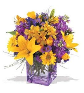 Adana çiçek mağazası , çiçekçi adresleri  cam içerisinde kir çiçekleri demeti