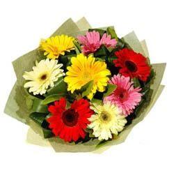9 adet karisik gerbera demeti  Adana çiçek mağazası , çiçekçi adresleri