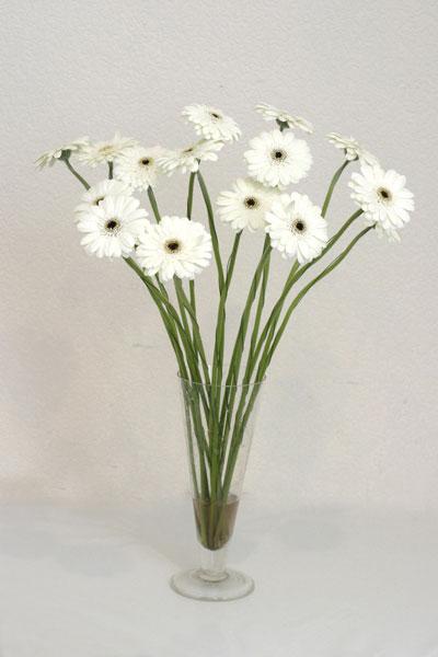 Adana çiçek mağazası , çiçekçi adresleri  cam vazo içerisinde 17 adet sade gerbera