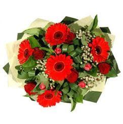 Adana ucuz çiçek gönder   5 adet kirmizi gül 5 adet gerbera demeti