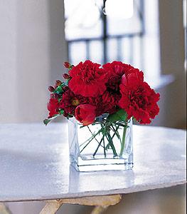 Adana ucuz çiçek gönder  kirmizinin sihri cam içinde görsel sade çiçekler