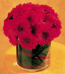 Adana ucuz çiçek gönder  23 adet gerbera çiçegi sade ve sik cam içerisinde