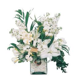 Adana internetten çiçek siparişi  sadece beyazlardan olusmus mevsim cam yada mika tanzim