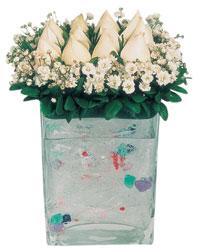 Adana çiçekçi mağazası  7 adet beyaz gül cam yada mika vazo tanzim