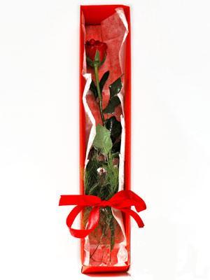 Adana yurtiçi ve yurtdışı çiçek siparişi  1 adet kutuda gül