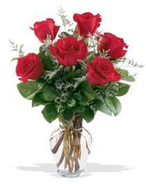 Adana çiçek gönderme sitemiz güvenlidir  7 adet kirmizi gül cam yada mika vazoda sevenlere