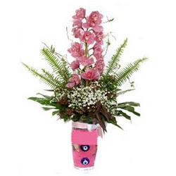 Adana hediye çiçek yolla  cam yada mika vazo içerisinde tek dal orkide çiçegi