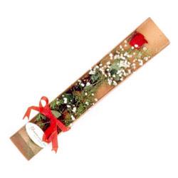 Adana çiçek , çiçekçi , çiçekçilik  Kutuda tek 1 adet kirmizi gül çiçegi