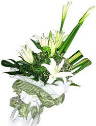 Adana güvenli kaliteli hızlı çiçek  3 dal kazablanka çiçegi ve yesillikler