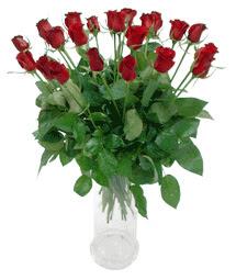 Adana çiçekçi telefonları  11 adet kimizi gülün ihtisami cam yada mika vazo modeli