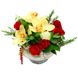 Adana çiçek gönderme  1 adet orkide 5 adet gül cam yada mikada