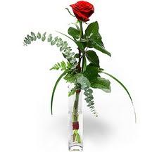 Adana 14 şubat sevgililer günü çiçek  Sana deger veriyorum bir adet gül cam yada mika vazoda