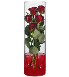 cam içerisinde 7 adet kirmizi gül  Adana çiçekçiler