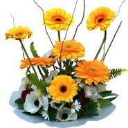 camda gerbera ve mis kokulu kir çiçekleri  Adana çiçekçi telefonları