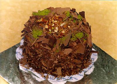 Çikolatali 4 ila 6 kisilik yas pasta  Adana çiçek gönderme sitemiz güvenlidir