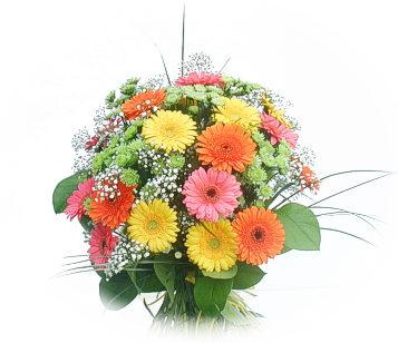 13 adet gerbera çiçegi buketi  Adana online çiçek gönderme sipariş