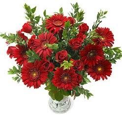 5 adet kirmizi gül 5 adet gerbera aranjmani  Adana hediye çiçek yolla