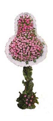 Adana ucuz çiçek gönder  dügün açilis çiçekleri  Adana internetten çiçek siparişi