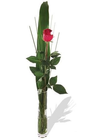 1 adet cam vazo içerisinde kirmizi gül  Adana çiçek , çiçekçi , çiçekçilik