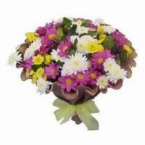 Adana çiçekçi telefonları  Mevsim kir çiçegi demeti