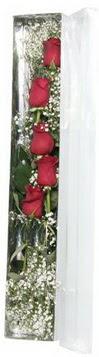 Adana çiçek siparişi sitesi   5 adet gülden kutu güller