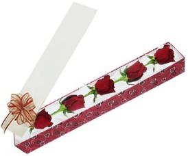 Adana internetten çiçek satışı  kutu içerisinde 5 adet kirmizi gül