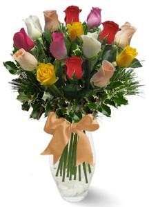 15 adet vazoda renkli gül  Adana internetten çiçek satışı