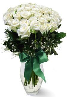 19 adet essiz kalitede beyaz gül  Adana çiçekçiler
