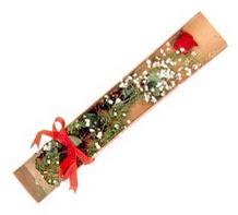 1 adet kirmizi gül  Adana çiçekçi telefonları