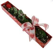 Tek kirmizi gül kutu içerisinde  Adana güvenli kaliteli hızlı çiçek