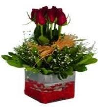 Adana çiçek gönderme  7 adet mika yada cam vazoda gül tanzimi