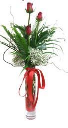 Adana çiçek siparişi sitesi  3 adet kirmizi gül vazo içerisinde