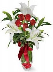 Adana çiçek siparişi vermek  5 adet kirmizi gül ve 3 kandil kazablanka