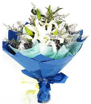Adana anneler günü çiçek yolla  4 adet dal kazablankadan görsel buket