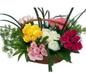 Adana ucuz çiçek gönder  35 adet rengarenk güllerden sepet tanzimi