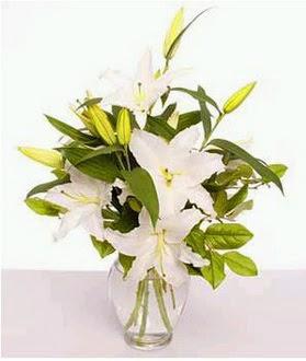 Adana çiçek gönderme  2 dal cazablanca vazo çiçeği