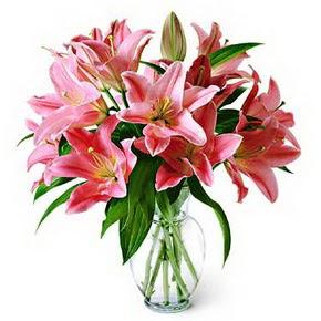 3 dal kazablanka görsel vazosu  Adana internetten çiçek siparişi
